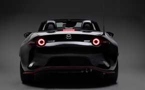 Picture lights, Mazda, rear view, 2018, MX-5, Yamamoto Signature