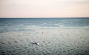 Picture sea, the sky, water, sunset, boat, ships, horizon, Russia, Anapa, Sukko