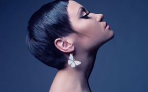 Picture face, background, butterfly, earrings, makeup, brunette, hairstyle, profile, decoration, beauty