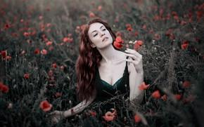 Picture girl, flowers, pose, mood, hair, Maki, meadow, Simone Arati