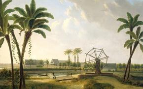 Picture landscape, picture, Willem de Klerk, Views of the Coffee Plantation in Suriname