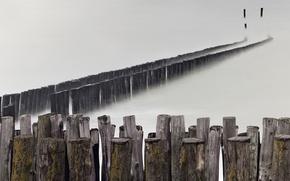 Picture sea, fog, shore
