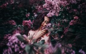Picture girl, mood, lilac, Nikolay Tikhomirov, the lilac Bush