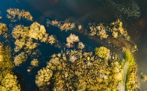 Wallpaper water, nature, river