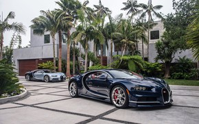 Wallpaper BUGATTI, auto, Chiron, palm trees, America, North