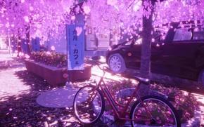Picture auto, flowers, bike, the city, spring, Sakura