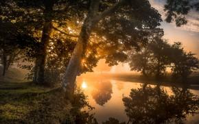 Picture autumn, fog, river