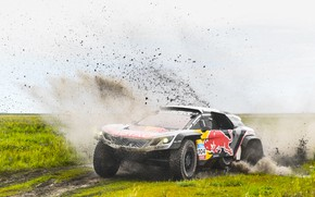 Picture Sport, Speed, Race, Dirt, Peugeot, Squirt, Lights, Red Bull, Rally, Rally, Sport, Overcast, DKR, 104, …