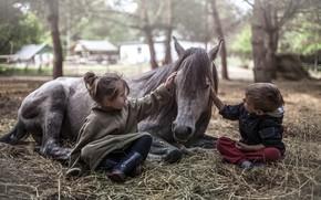 Wallpaper horse, boy, girl