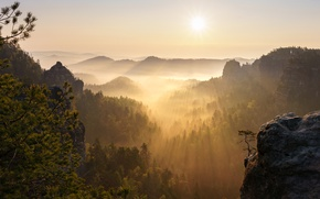 Picture forest, the sky, the sun, rays, light, landscape, mountains, branches, nature, fog, rock, mood, dawn, ...