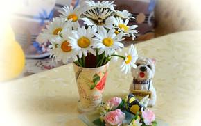 Picture Spring, Chamomile, Vase, Spring