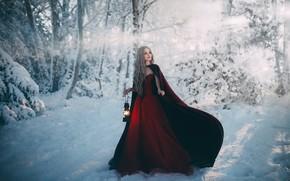 Picture girl, snow, dress, lantern, Bird Man