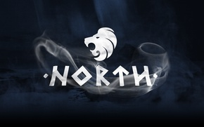 Picture Team, CSGO, Professional, North, Denmark, Esports