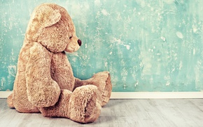Picture Wall, Bear, Sitting
