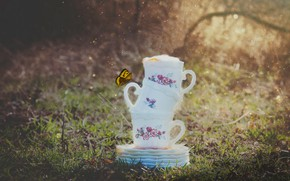 Picture rain, butterfly, Cup, mugs, saucers