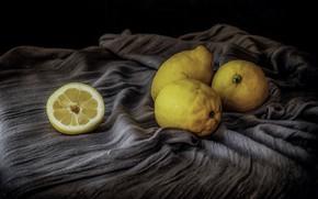 Picture still life, lemons, Limones