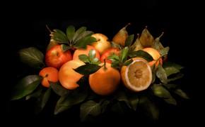 Picture leaves, Apple, orange, still life, citrus, pear