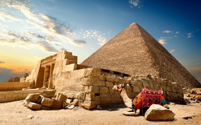 Wallpaper stones, the sky, Cairo, clouds, sand, Egypt, desert, pyramid, camel, the sun