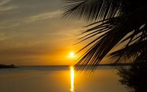 Picture sea, landscape, dawn