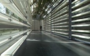 Picture people, greenhouse, Farm, corridor