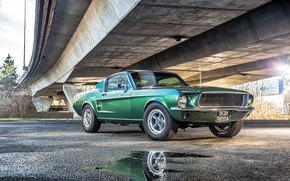 Wallpaper Ford, Mustang, Fall, Ford, Rear, Automotive, Green, Beautiful, Mustang, under the bridge, American Muscle, GT390, ...