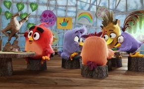 Picture cinema, Red, bird, school, eagle, movie, film, animated film, Angry Birds, animated movie, Angry Birds: …