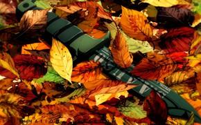 Picture weapon, blade, leaf, knife, konoha, Ansatsu Kyoushitsu, Assassination Classroom