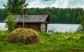 Picture greens, forest, summer, grass, trees, lake, house, shore, stack, hay, Russia, dandelions, hut, Lake Ladoga, ...
