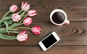 Wallpaper flowers, phone, coffee, tulips