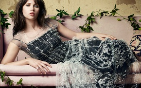 Picture leaves, branches, makeup, dress, actress, brunette, hairstyle, on the couch, eel, photoshoot, posing, lying, Felicity …