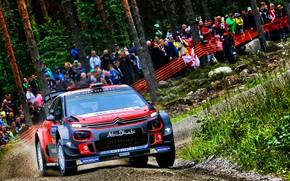 Picture Winter, Auto, Snow, Forest, Sport, Machine, People, Race, Citroen, Citroen, Car, WRC, Rally, Rally, Citroen …