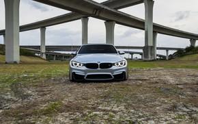 Picture BMW, Green, Bridge, Silver, F82