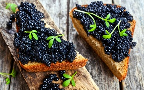 Picture greens, bread, black, caviar, sandwiches