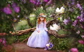 Picture flowers, birds, branches, mood, spring, dress, pigeons, girl, snag, basket, flowering, wreath, lilac