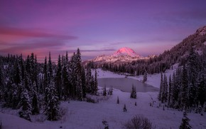 Picture winter, forest, snow, sunset, mountains, Doug Shearer