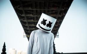 Wallpaper EDM, DJ, Marshmello