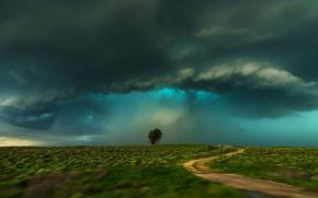 Wallpaper USA, storm, field, Colorado, clouds, Lamar, tree