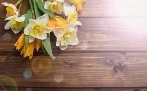 Picture flowers, bouquet, spring, tulips, wood, flowers, tulips, daffodils, spring