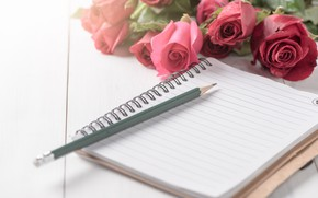 Picture flowers, roses, bouquet, handle, Notepad