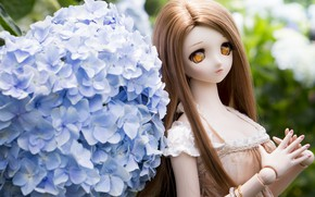 Picture toy, doll, hydrangea