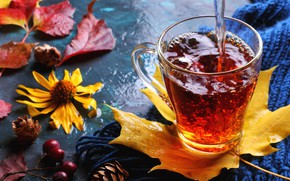 Picture autumn, leaves, tea, drink