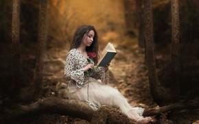 Picture forest, girl, rose, book, reading, Carmen Gabaldon