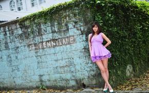 Picture summer, face, hair, dress, legs, beauty, girl Oriental
