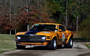 Picture Boss 302, Ford Mustang, yellow, 1970, race car