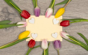 Picture flowers, heart, colorful, hearts, tulips, love, heart, flowers, romantic, tulips, spring