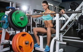 Picture girl, pose, makeup, figure, slim, brunette, hairstyle, fitness, iron, rod, sitting, the gym, trainer, deals