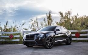Picture BMW, Black