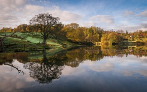 Picture autumn, trees, lake, England, Cumbria