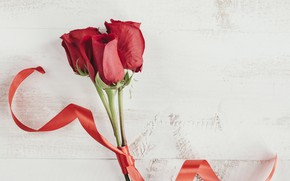 Picture roses, Flowers, tape, red roses