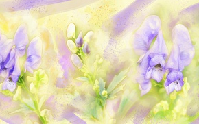 Picture flowers, green, background, lilac, figure, graphics, treatment, picture, garden, art, painting, gently, easy, drawing, strokes, …